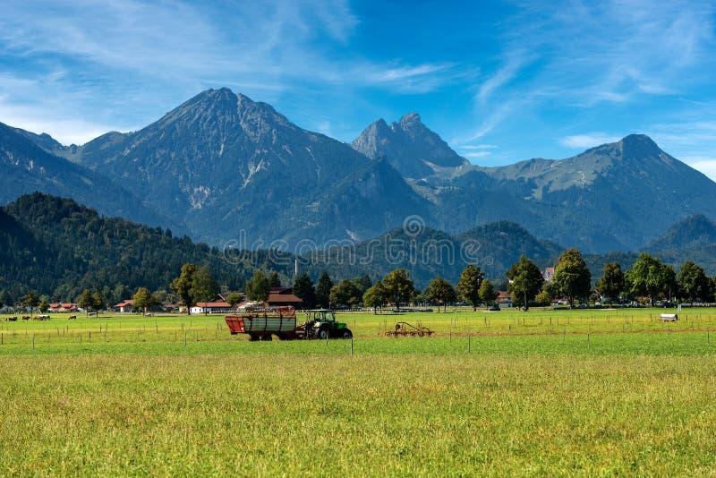 Wieś i Alps - Bavaria Schwangau Niemcy obraz stock