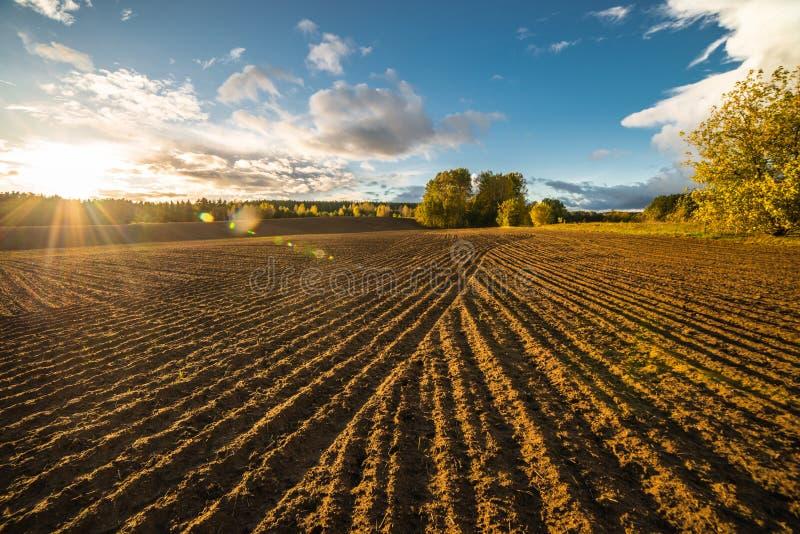 Wieś krajobraz przeorzący pole zdjęcia royalty free