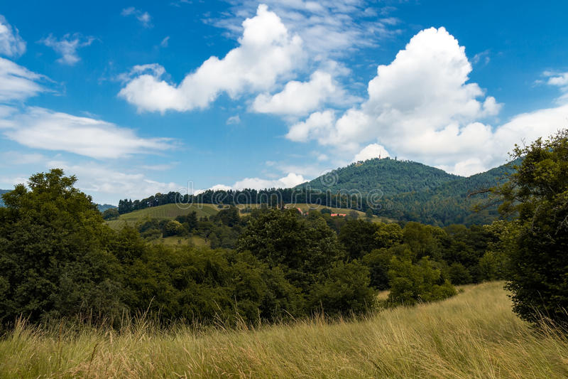 Wieś krajobraz z górą, winnicą i drzewami, fotografia stock