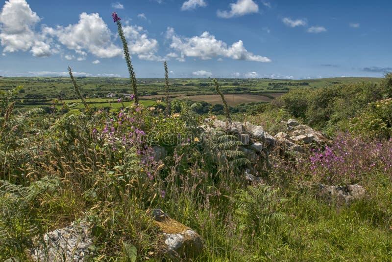 Wieś przy Chysauster Cornwall fotografia royalty free