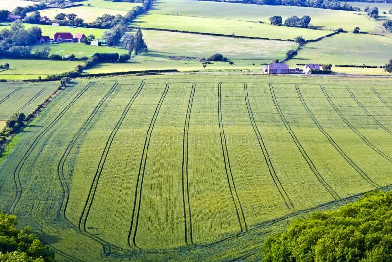 wieś Sussex zdjęcie royalty free