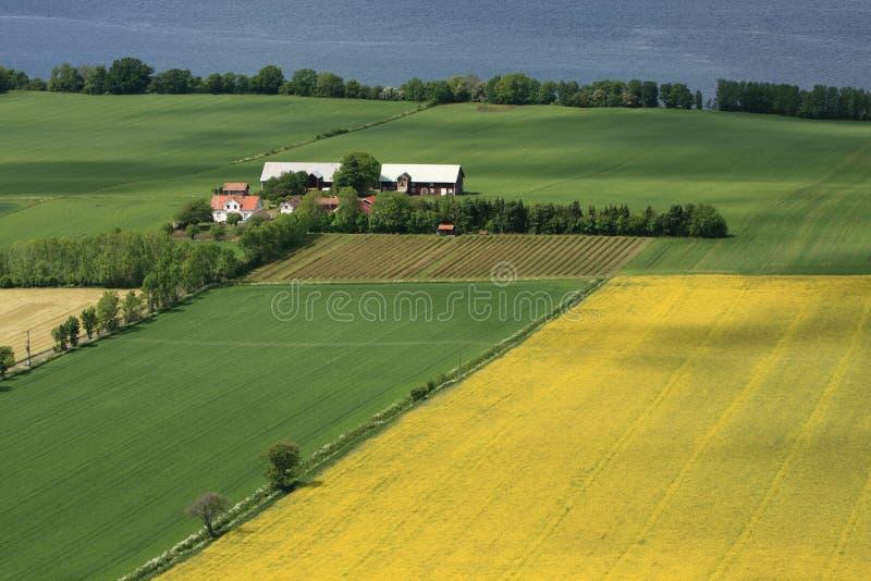 wieś szwedzi fotografia royalty free