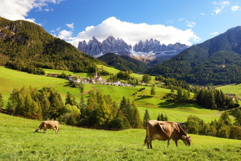 Wieś widok Funes dolina, Bolzano, Włochy fotografia royalty free