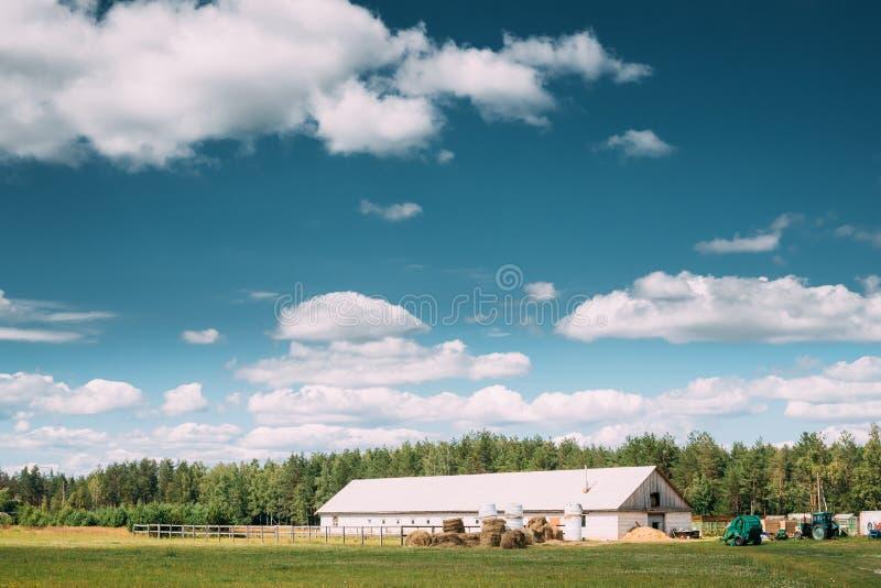 Wieś Wiejski krajobraz Z Rolnym padokiem Dla konia, jata, stajnia Lub stajenka Z Haystacks W Lat lata sezonie, zdjęcie royalty free
