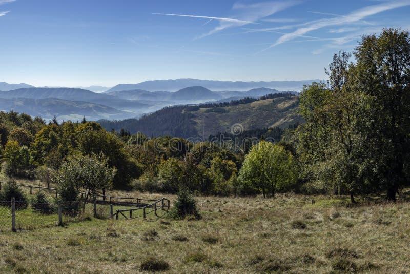 Wieś z łąkami i lasami zdjęcie stock