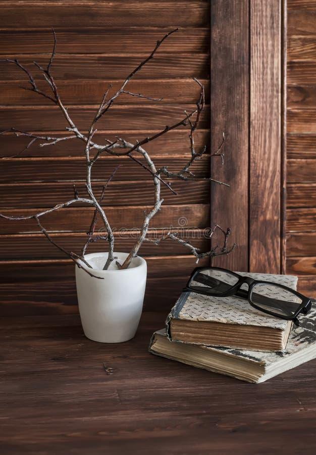 Wieśniaka wciąż życie - sterta stare książki, szkła i skład gałąź w białej wazie, zdjęcie stock