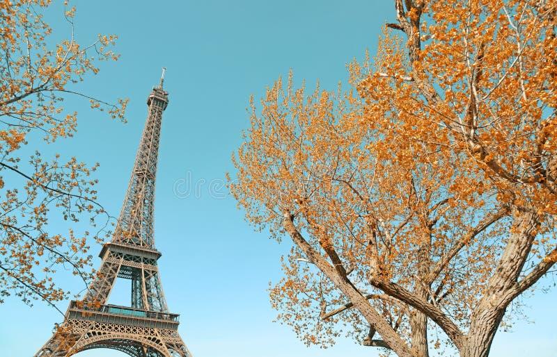Wieża Eifla i złoci jesienni drzewa obrazy royalty free