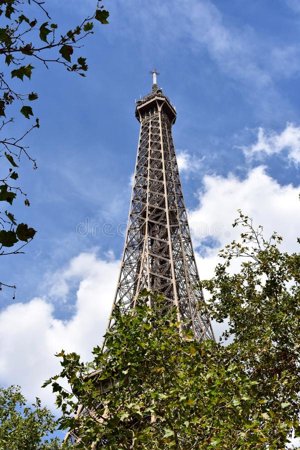 Wieża Eifla z drzewami, Paryż, Francja fotografia royalty free