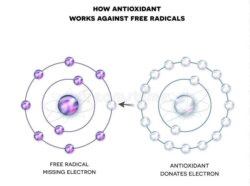 Wie Antioxydant gegen freie Radikale arbeitet stock abbildung