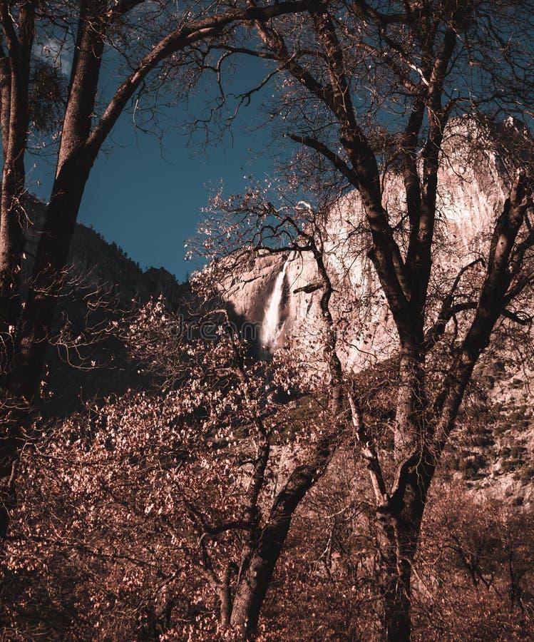Wie die Sonne die hellen Fänge Yosemite Falls gerade tadellos einstellt lizenzfreie stockfotos