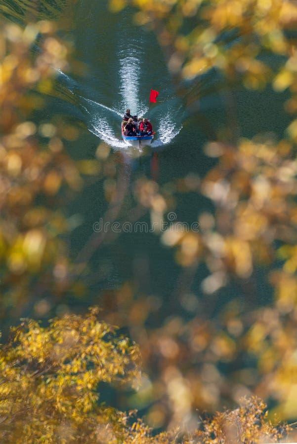 Wie Spiderweb stockfotografie