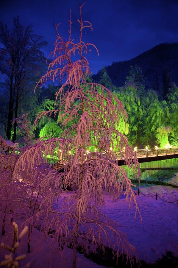 wieczór świetny gór śnieg zdjęcia stock