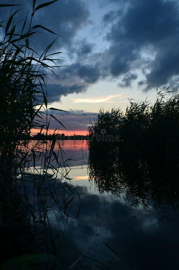 Wieczór brzeg nabrzeżna trawa i jezioro zdjęcie stock