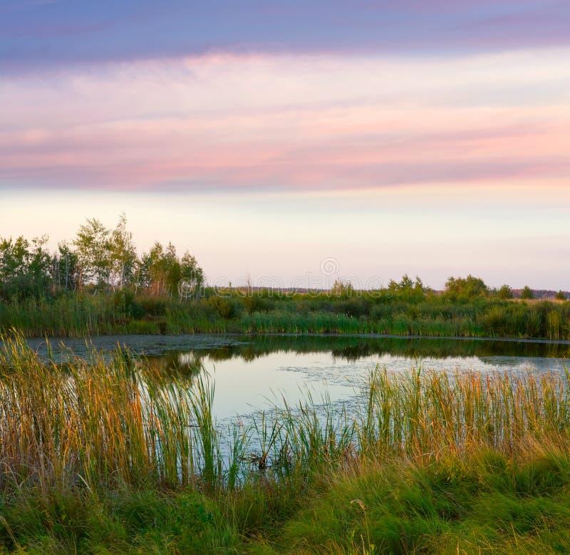 wieczór jeziora scena zdjęcie royalty free