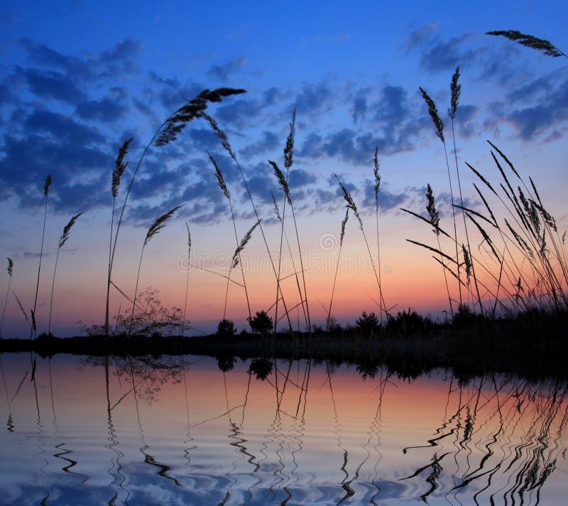 wieczór jeziora scena zdjęcia stock
