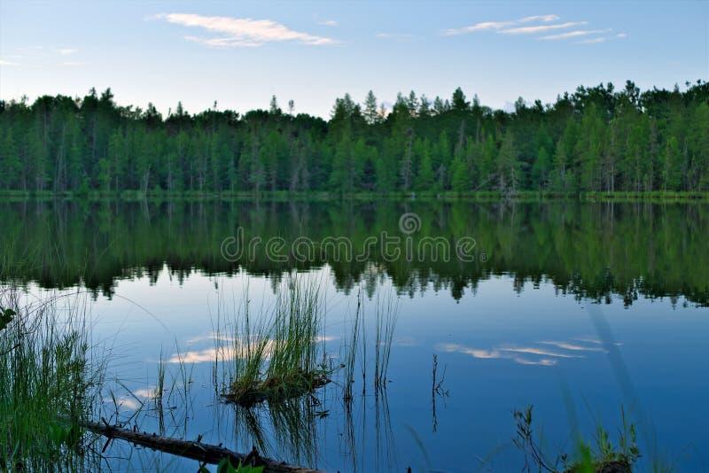 Wieczór przy dalekim jeziorem w lesie w północnym Minnestoa zdjęcia stock