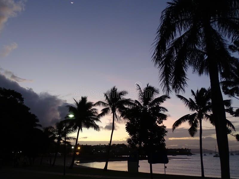 Wieczór scena tropikalna plaża w blasku księżyca przy laguną zdjęcie royalty free