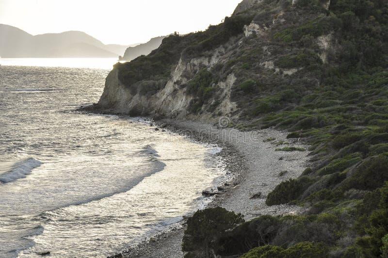 Wieczór seascape plażą z wysoką linią brzegową z florami obraz royalty free