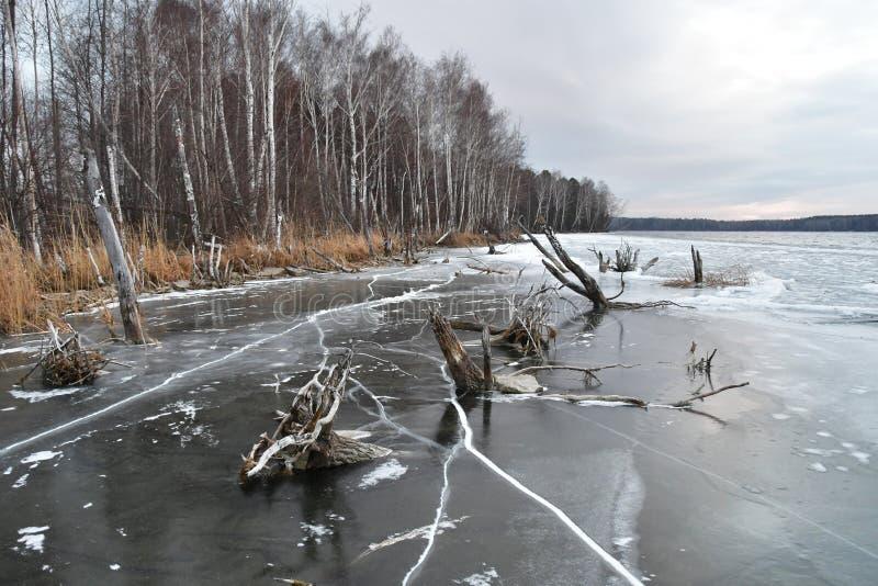 Wieczór zimy widok jeziorny Uvildy brzeg wyspa Vyazovy Południowy Ural, Chelyabinsk region zdjęcie stock
