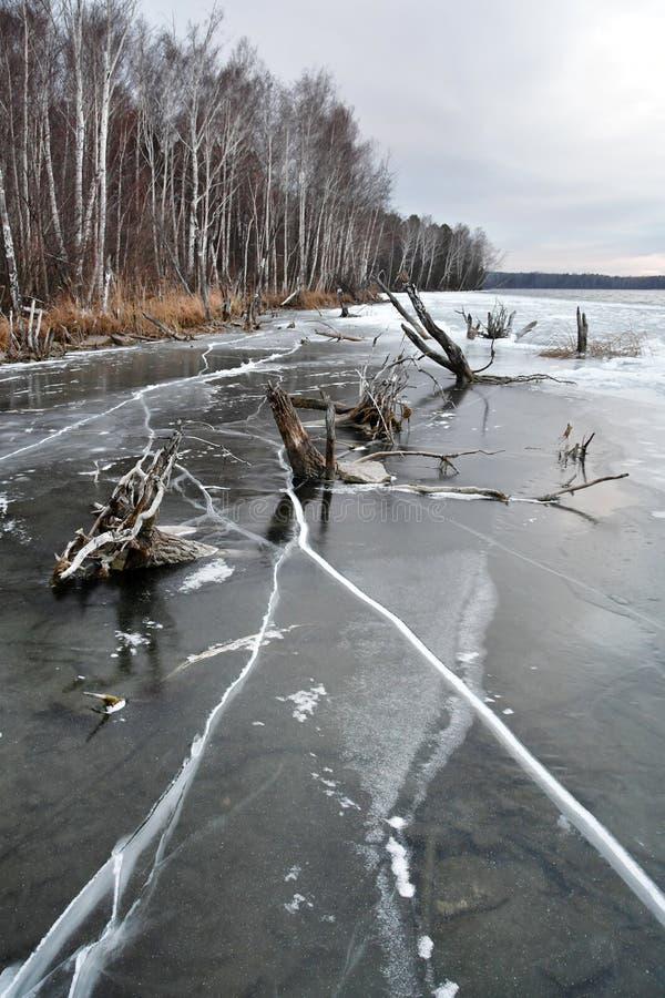 Wieczór zimy widok jeziorny Uvildy brzeg wyspa Vyazovy Południowy Ural, Chelyabinsk region obrazy royalty free
