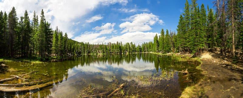 Wiecznozieloni drewna wokoło jeziora Estes Parkują panoramę fotografia stock