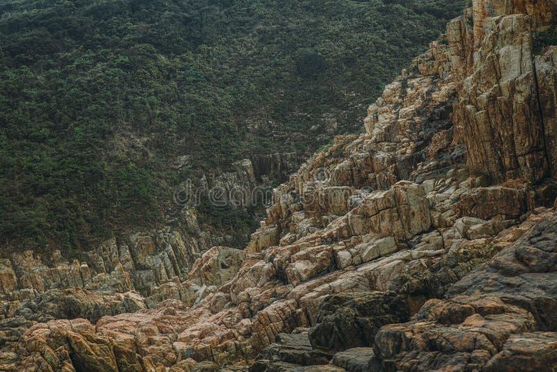 Wiecznozielony las poza góra kamienia zatoczka zdjęcie royalty free