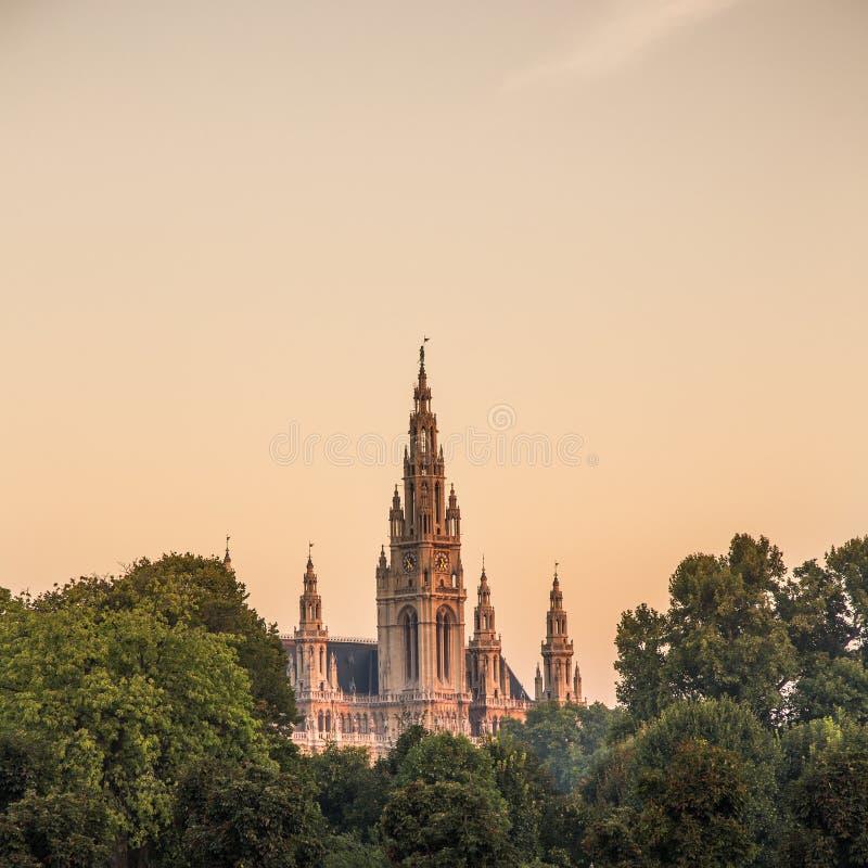 Wiedeń urząd miasta obrazy royalty free
