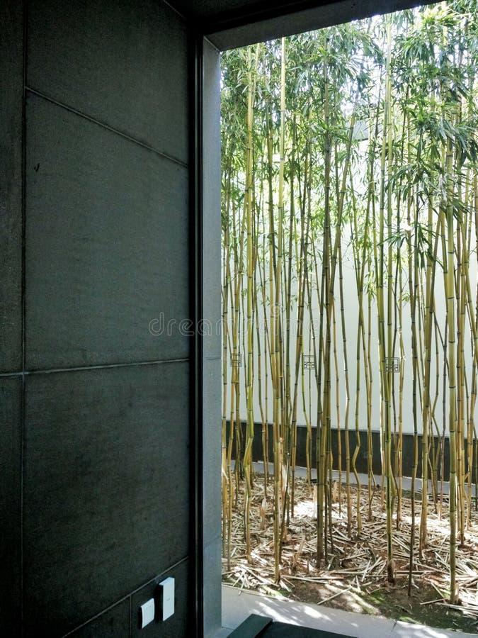 Wiedergabe 3D Büroräume Eine Fenstertür mit Bambusaußenseite lizenzfreies stockbild
