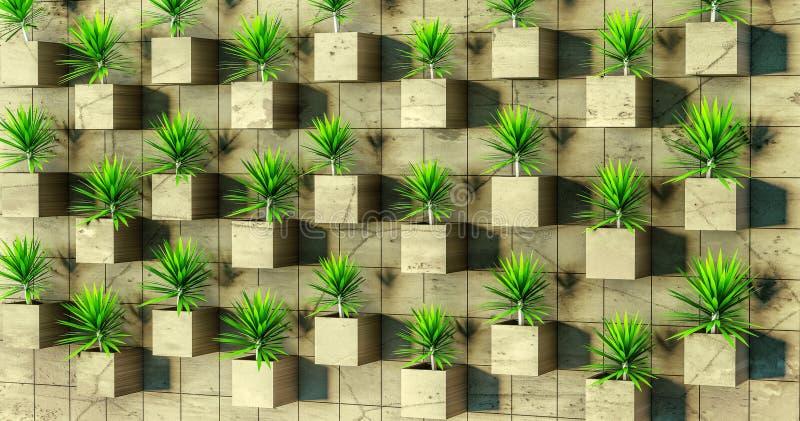 Wiedergabe 3d Succulents auf der Wand lizenzfreies stockfoto