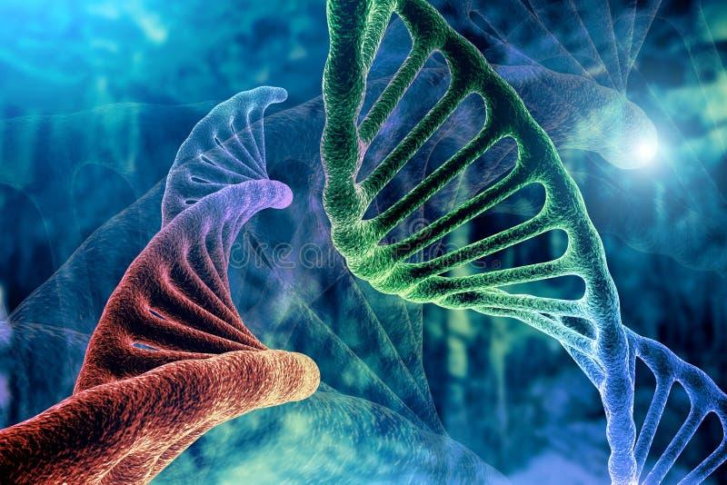 Wiedergabe des DNA-Strangs-und Krebs-Zellonkologie-Forschungs-Konzeptes 3D, abstrakter Hintergrund, Mischen von zwei Strukturen vektor abbildung