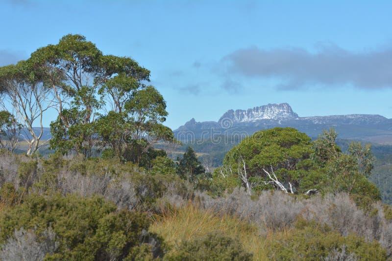 Wiegen-Berg-See-St. Clair National Park Tasmania Australia lizenzfreie stockfotos