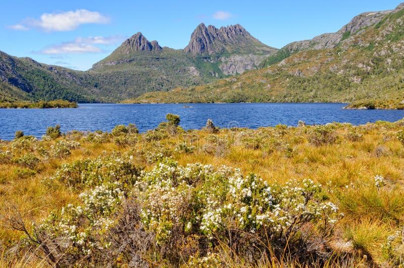 Wiegen-Berg und Dove See - Tasmanien stockfotos