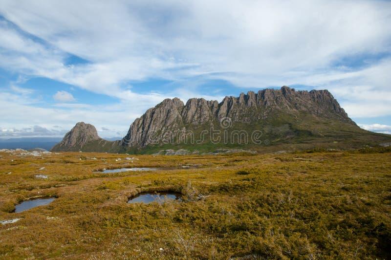 Wiegen-Gebirgsnationalpark - Tasmanien - Australien stockbilder