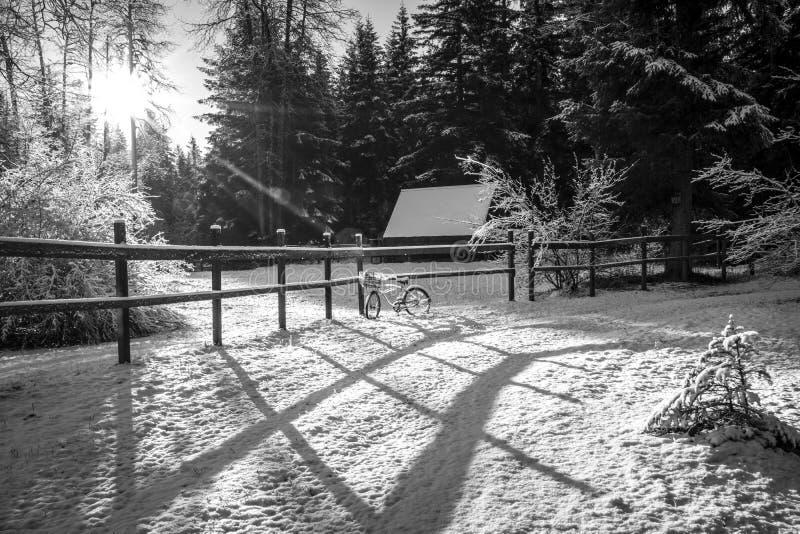 Wiejska Alaska zima w czarny i biały obrazy royalty free