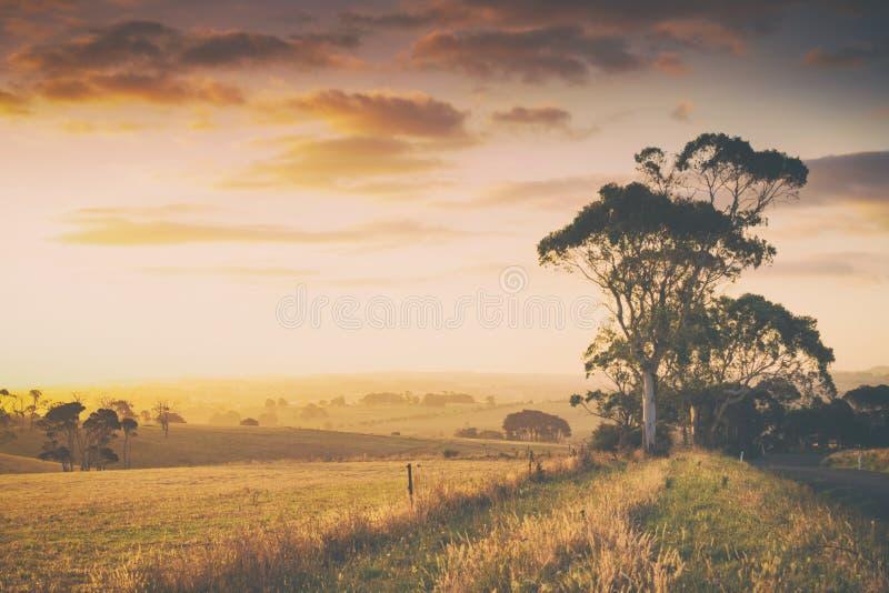 Wiejska Australia ziemia uprawna zdjęcie stock