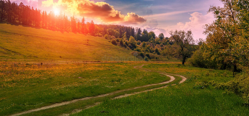 Wiejska droga gruntowa przy zmierzchem Zielonej trawy pole i góra krajobraz fotografia royalty free