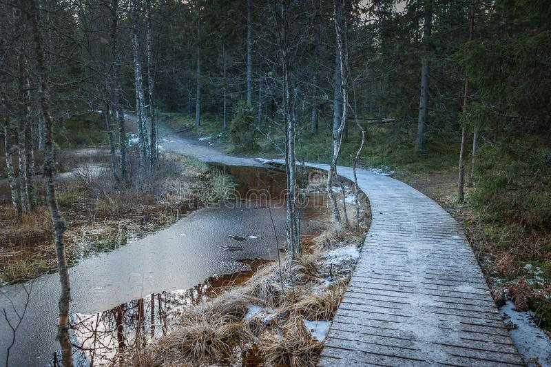 Wiejska droga i drewniany boardwalk w lesie pierwszy śnieg zdjęcie stock