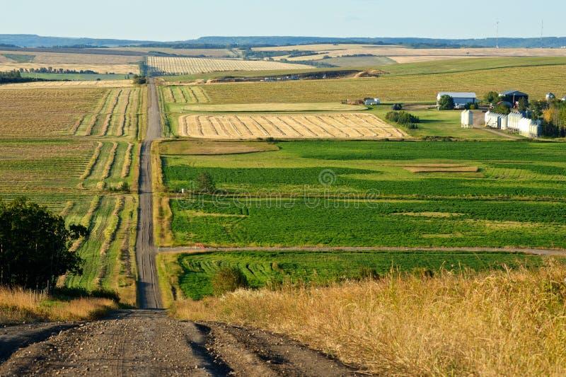 Wiejska droga i gospodarstwa rolne w spadku zdjęcie royalty free