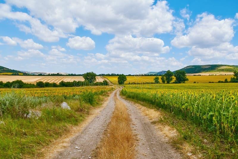 Wiejska droga między polami zdjęcia stock