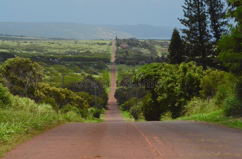 Wiejska Droga na Molokai obraz stock