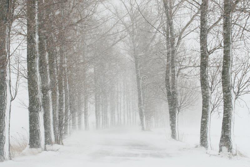 Wiejska droga na wietrznym zima dniu obrazy royalty free