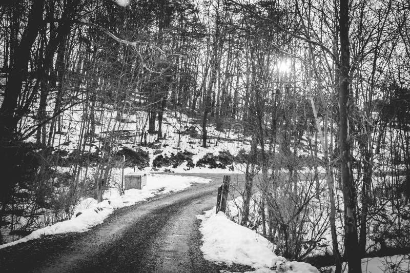 Wiejska droga przez śniegu zdjęcie stock