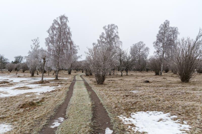 Wiejska droga w mroźnego krajobraz obrazy royalty free