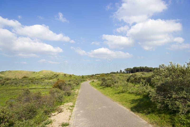 Wiejska Droga w Wibrującym Barwionym krajobrazie zdjęcie stock