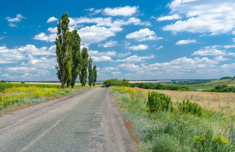 Wiejska droga w wiejskim Ukraińskim terenie obraz stock