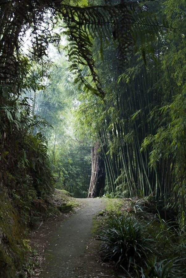 Wiejska Droga w zachodzie Chiny zdjęcia royalty free