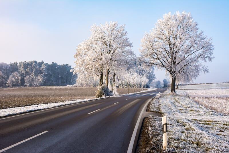 Wiejska droga w zima krajobrazie z frosted drzewami obrazy stock