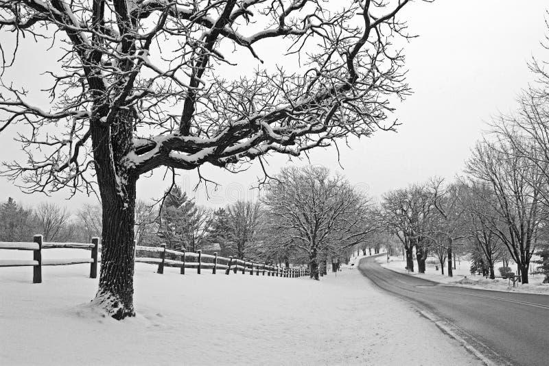 Wiejska droga w zimie zdjęcie stock