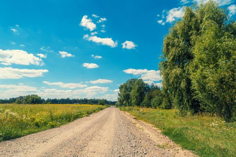Wiejska droga wzdłuż pola obraz royalty free