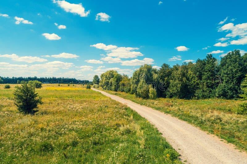 Wiejska droga wzdłuż pola fotografia royalty free
